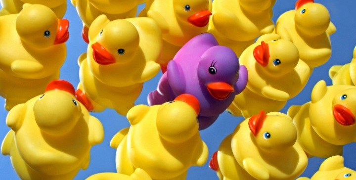rubber ducky 750x380